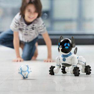 chip robot dog playing
