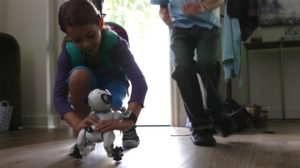 WowWee CHiP Robot Dog Customer Feedback